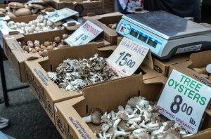 Market Mushrooms.59